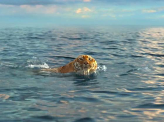reg_1024.lifeofpi.tigerswim.mh.072612