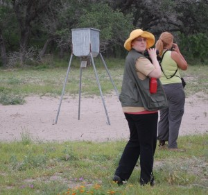 Spying two red-headed birders at King Ranch, next to the feed station for the deer and nilgai.