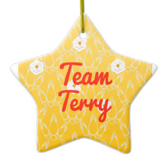 team_terry_double_sided_star_ceramic_christmas_ornament-r4e8a95a3af254affaf2c4d254dfb8ed3_x7s2g_8byvr_324